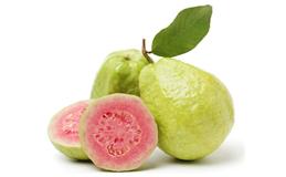 Экстракт плодов гуавы