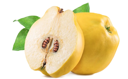 Экстракт плодов айвы