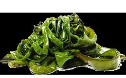 Экстракт водорослей